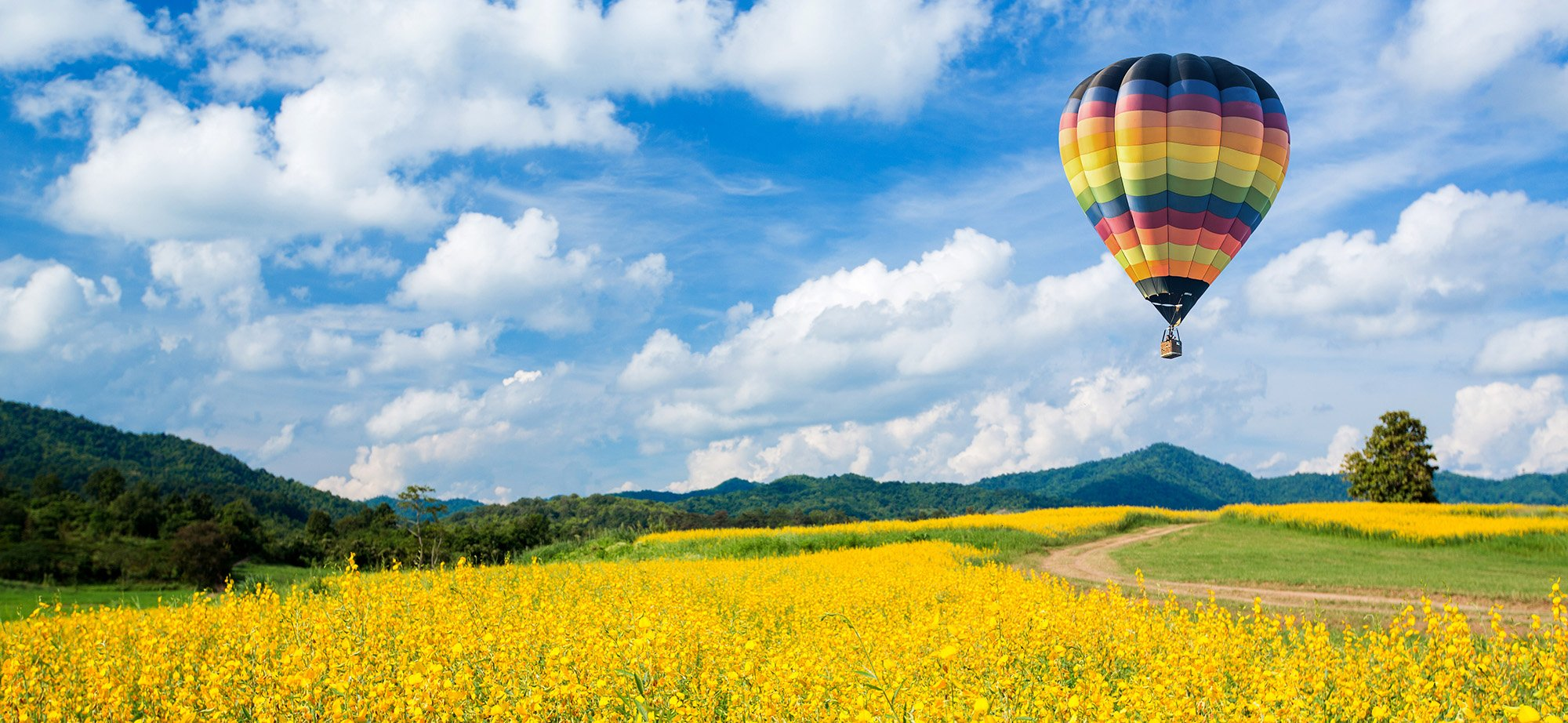 hot air balloon over field with clouds in sky